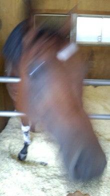藤岡佑介 オフィシャルブログ 「馬に願いを」 Powered by Ameba-110630_065507.jpg