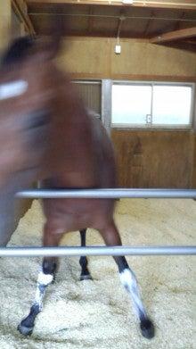 藤岡佑介 オフィシャルブログ 「馬に願いを」 Powered by Ameba-110630_064922.jpg