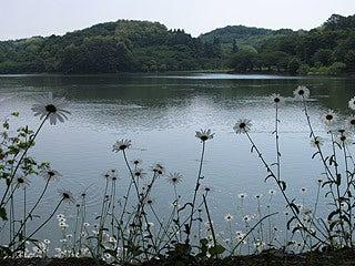 晴れのち曇り時々Ameブロ-高松の池