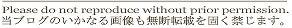 SHINTAMA BLOG-記事下部リンク02