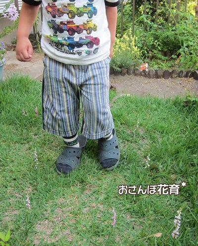 動画で見る!3分フラワーアレンジ-ネジバナの間を歩く息子
