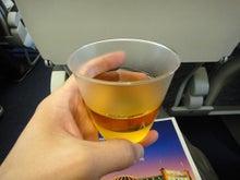 まったりトラベラーのまったりブログ-ロイヤル・ブルネイ航空3