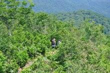 白神山地ツアーで能代山本地区の活性化すっぺ-2011年7月の白神山地・藤里駒ケ岳7