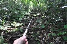白神山地ツアーで能代山本地区の活性化すっぺ-2011年7月の白神山地・藤里駒ケ岳2