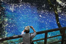 白神山地ツアーで能代山本地区の活性化すっぺ-2011年7月の白神山地「十二湖」最新情報5