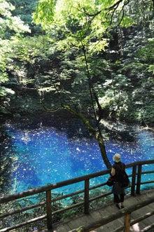 白神山地ツアーで能代山本地区の活性化すっぺ-2011年7月の白神山地「十二湖」最新情報7