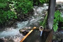 白神山地ツアーで能代山本地区の活性化すっぺ-2011年7月の白神山地「十二湖」最新情報1