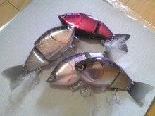 $Flowerの魚と遊ぶ日々-Image986.jpg