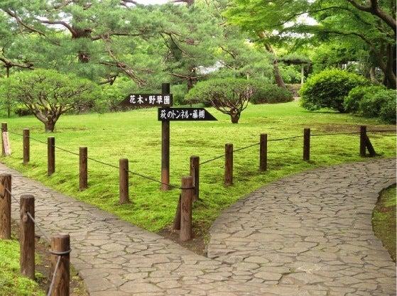 ★kazugonの気ままにぶらり旅★-7殿ヶ谷分かれ道
