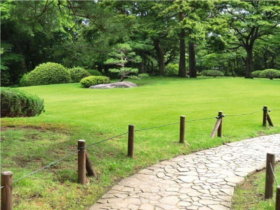 ★kazugonの気ままにぶらり旅★-4殿ヶ谷芝生と小道