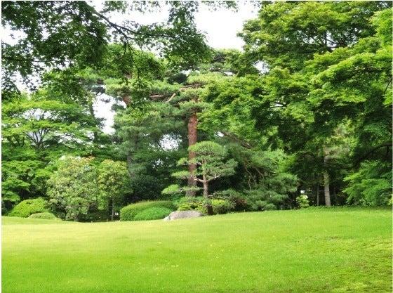 ★kazugonの気ままにぶらり旅★-5殿ヶ谷芝生