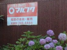 マナ男のブログ-CA395794.jpg