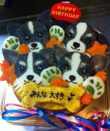 $小川 茉莉音 Official blog☆『Cherish☆』 チワワ6人との共同生活しながらのお仕事は、なかなか大変だけど楽しいよ♪-__.JPG