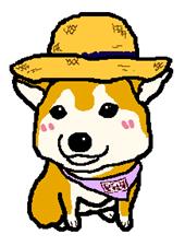 柴犬♪ちゃちゃのブログ