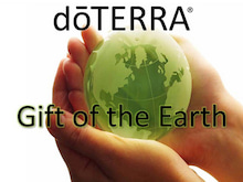 $d?TERRAの精油たち-地球の贈り物