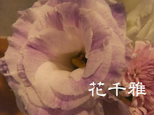 千葉県野田市 花千雅 フラワーサロン-トルコ
