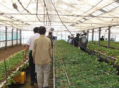 農業のトータルコーディネータ  イノウエ農商事のブログ-2307222