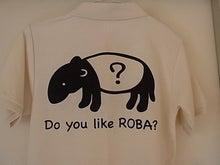 $ROBA?