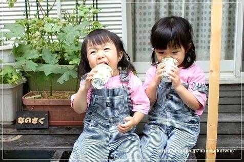 双子のなのさくちゃん-1