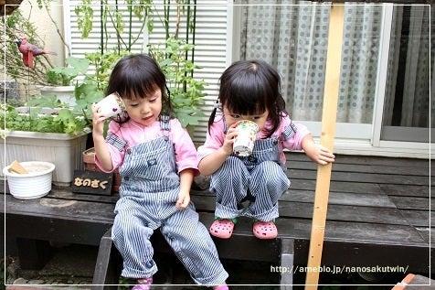双子のなのさくちゃん-3