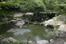 道志村『隠れ家的』ブログ-池