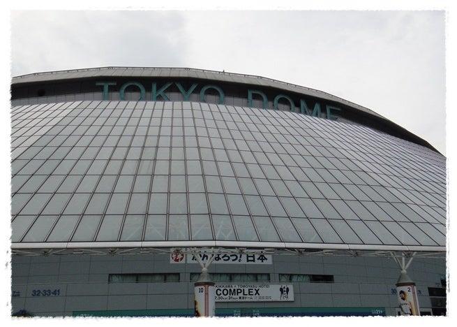 旅犬Lani&Leaのほほん風船記-COMPLEX 日本一心ライブ