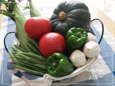 Nagano Life**-お野菜
