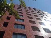 英会話名古屋ヴィゴラランゲージスタジオ丸の内・久屋のビル1階です。