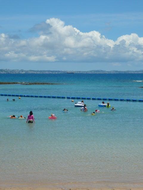 沖縄@ITアチネーサーのブログ