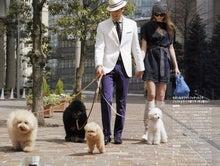 モデル犬chutaの願い事