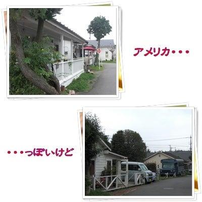 ポチちょっと日本に住んでみる・・・