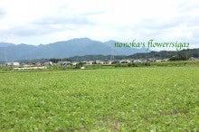 $flower talk&アロマtalk