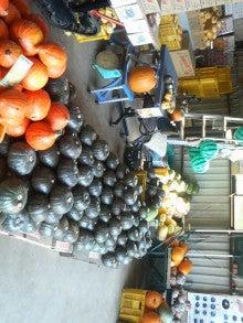 神奈川県 三浦市 伊藤農園のブログ-201108081307000.jpg