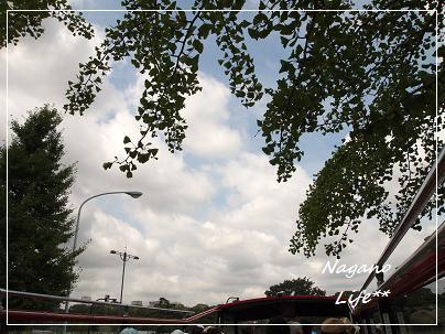 Nagano Life**-木