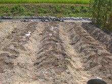 耕作放棄地をショベル1本で畑に開拓!週2日で10時間の野菜栽培の記録 byウッチー-110809たまねぎ苗床準備と太陽熱処理方法05