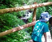 タロイモ倶楽部@ママと息子と山歩き-20110811105732.jpg