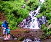 タロイモ倶楽部@ママと息子と山歩き-20110811110511.jpg