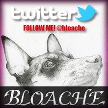 $BLOACHE blog