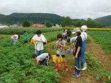 北のてっぺん・そうや自然学校で夏休み!-農作業1