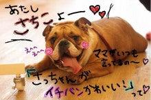 プチマリア富山店のブログ
