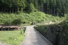 道志村『隠れ家的』ブログ-道志川荘