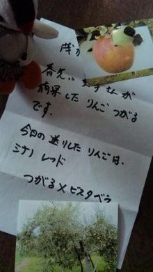 オカメインコのももちゃんと花教室と旅日記-110825_083230.jpg