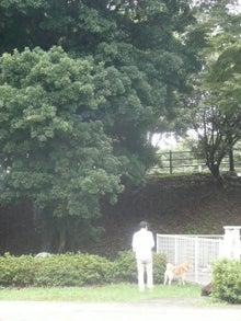 東北動物レスキュー 長崎の保健所の命を救う会の代表のブログ-れお