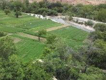 砂漠とカスバとオアシスで・・・ベルベル人とのモロッコライフ -庭
