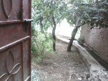 砂漠とカスバとオアシスで・・・ベルベル人とのモロッコライフ -庭へ