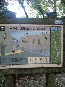 Little Japan-110825_131709.jpg