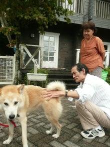 東北動物レスキュー 長崎の保健所の命を救う会の代表のブログ-reo