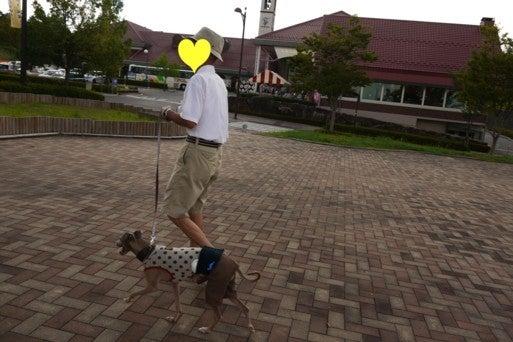 イタグレ アトム日記