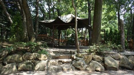 初めてのオートキャンプ!子供と一緒にキャンプに行こう!-キャンプ・アンド・キャビンズ、サイトレポート3