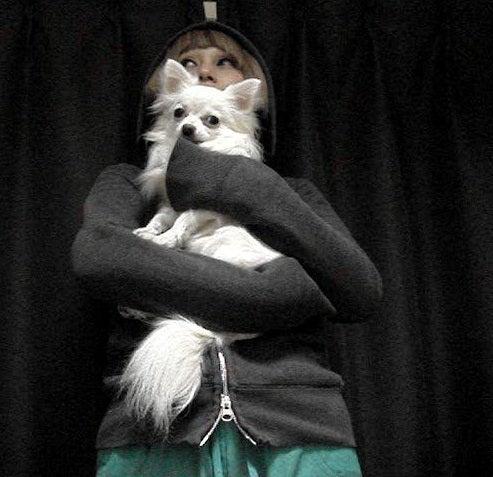 ◎me?Chihuahua!チワワ◎